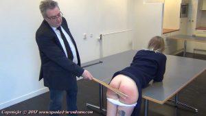 punishment birching rod